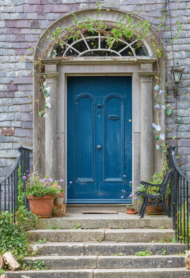 The carved limestone doorcase with original fanlight overhead and limestone steps