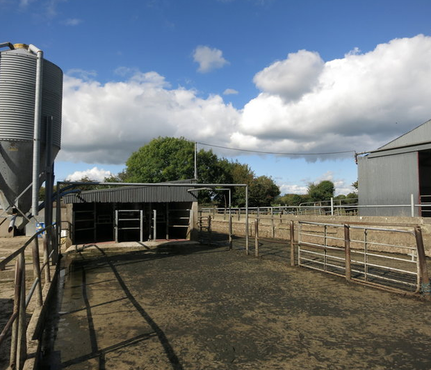Located 12km from New Ross on the road between Ballinaboola and Wellingtonbridge the farm is for sale as an entire or in three lots.