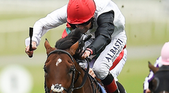 Cracksman and Frankie Dettori can land the Qipco Champion Stakes at Ascot today. Photo: Sportsfile