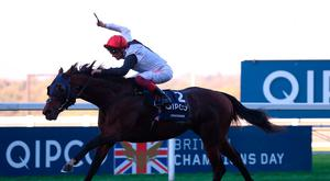 Cracksman and Frankie Dettori win The QIPCO Champion Stakes Race run during QIPCO British Champions Day at Ascot Racecourse