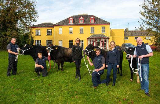 Pictured at Dovea Genetics are Andy Bourke, Bull Yard Manager, Tony Cantwell, Niamh Mulqueen, COO, Bóthar, Denis Brereton, Tara Guinan, Marketing Executive, and Enda Dooley, Product Development and Quality Manager, Dovea Genetics. Photo by Diarmuid Greene / True Media
