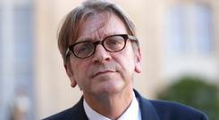 European Parliament's Brexit co-ordinator Guy Verhofstadt. Photo: AFP/Getty Images