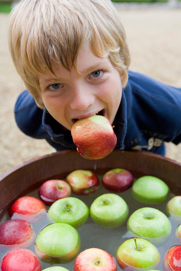 SEAN NOS: Bobbing for apples. Stock picture
