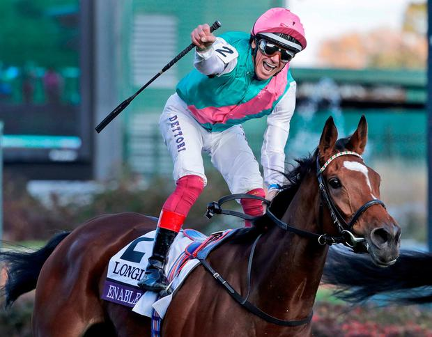 Lanfranco Dettori celebrates as he rides Enable to victory in the Breeders' Cup Turf horse race at Churchill Downs