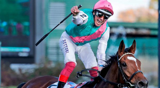 Watch: Enable cements her place in racing folklore with Breeders' Cup Turf triumph