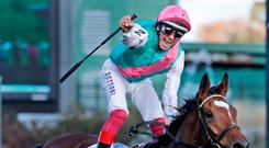 Frankie Dettori celebrates after steering Enable to victory at Churchill Downs. Image: AP Photo/Darron Cummings