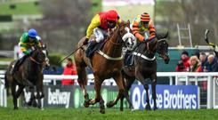 Native River, with Richard Johnson up, won the Cheltenham Gold Cup. Photo: Ramsey Cardy/Sportsfile