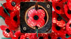 Limited edition centenary poppies are made at the Lady Haig Poppy Factory in Edinburgh. Photo: PA