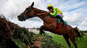 TIPPED: Synopsis, with Davy Russell on board, in action during the Cheesestrings Mares Novice Chase at Listowel last September. Photo: racingpost.com