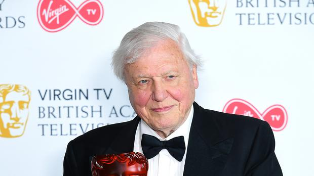 Sir David Attenborough joins Netflix for new nature documentary series (Ian West/PA)