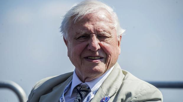 Sir David Attenborough (Peter Byrne/PA)