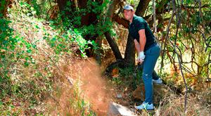 Rory McIlroy plays a shot from the bushes during his third round of the Nedbank Golf Challenge. Photo: Stuart Franklin/Getty Images