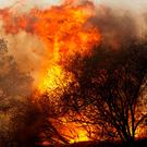 MALIBU, CA - NOV 11: A wildfire burns at the Salvation Army Camp on November 10, 2018 in Malibu, California. The Woolsey fire has burned over 70,000 acres and has reached the Pacific Coast at Malibu as it continues grow. (Photo by Sandy Huffaker/Getty Images)