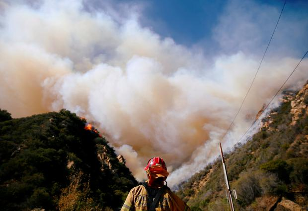 Firefighters battle the Woolsey Fire as it continues to burn in Malibu, California, U.S., November 11, 2018. REUTERS/Eric Thayer