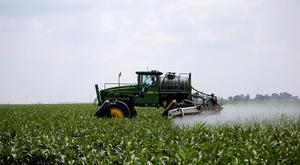 FILE PHOTO: A worker uses a John Deere tractor to spray a field of crops during a crop-eating armyworm invasion at a farm in Settlers, northern province of Limpopo, South Africa, February 8, 2017. REUTERS/Siphiwe Sibeko/File Photo