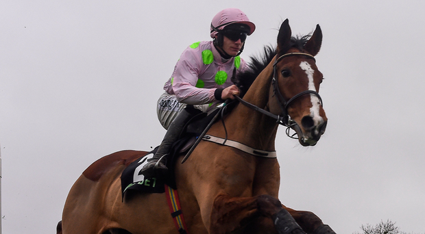 Faugheen and Paul Townend on the way to landing last year's Morgiana Hurdle. Photo: Sportsfile