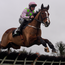 Faugheen and Paul Townend