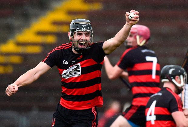 Ballygunner's JJ Hutchinson celebrates his side's epic Munster semi-final victory over Ballyea. Photo: Matt Browne/Sportsfile