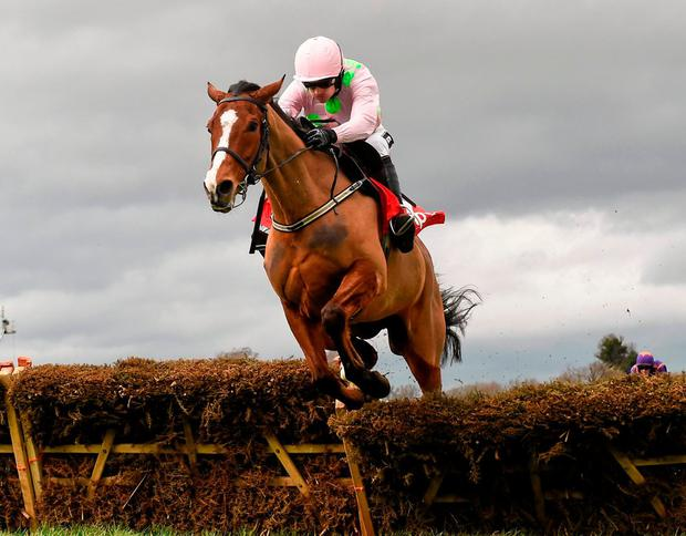 Faugheen and Ruby Walsh go for glory in the Morgiana Hurdle at Punchestown today. Photo: Brendan Moran / Sportsfile