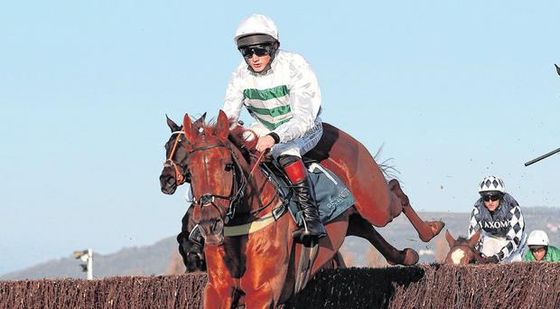 Moore team strikes Gold as Baron lords it at Cheltenham