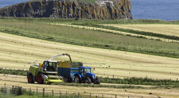 Farmers told to carry two months' worth of extra silage