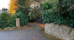 The access road to the site and the Kennys' house. Photo: Frank McGrath
