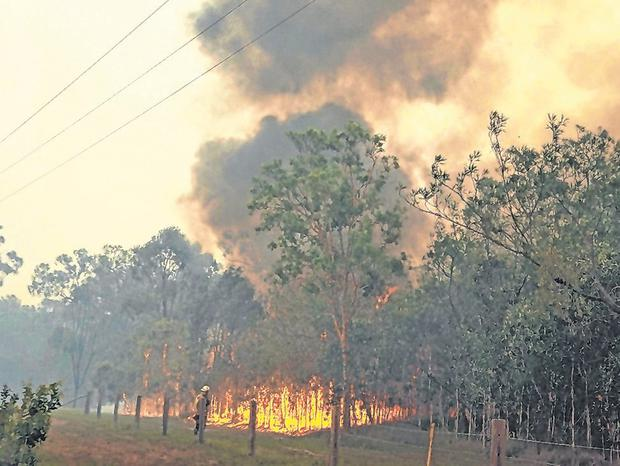 A fire rages in the Deepwater National Park, Queensland. Photo: Rob Griffith/AFP/Getty Images