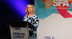 Sue O'Neill has been re-elected as chair of the SFA