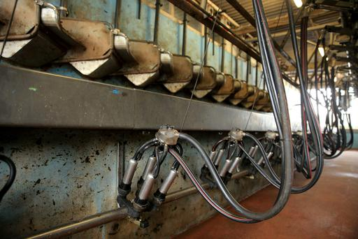 Milking parlour on the farm of Gillian and Neil O'Sullivan, Dungarvan Co. Waterford. Picture; Gerry Mooney