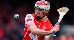 O'Callaghan: his hurling manager at Cuala is now the Dublin boss. Photo: Matt Browne/Sportsfile