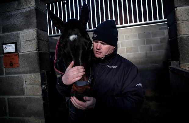 PLANS: Gordon Elliott with Apple's Jade at his yard in Longwood, Meath this week. Pic: INPHO/Dan Sheridan