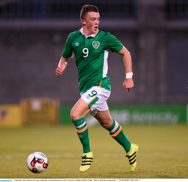 Michael O'Connor has declared for Northern Ireland