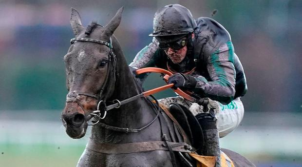 Altior produces his best to take Tingle thriller