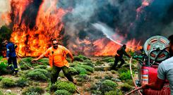 Europe ablaze: Firefighters and volunteers try to extinguish flames during a wildfire in the village of Kineta, near Athens, on July 24 this year. Photo: AFP/Getty Images