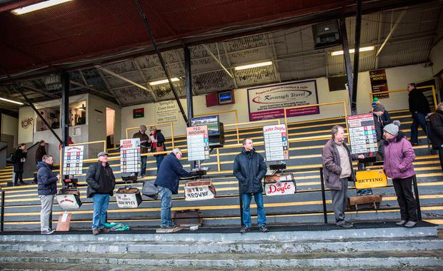 On track: Bookies at St James's Park. Photo: Pat Moore