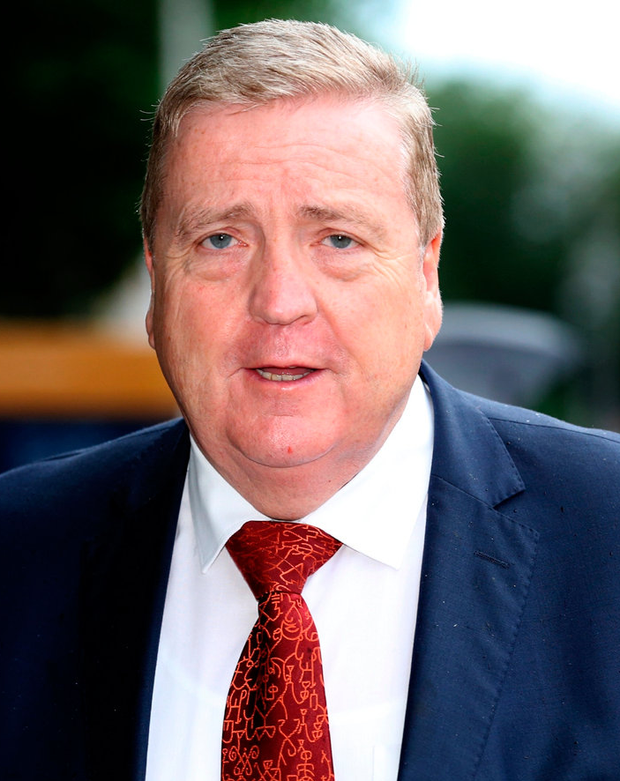 Minister of State for Trade, Business and EU Digital Single Market, Pat Breen . Photo: Steve Humphreys