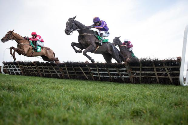Easy Game, with Ruby Walsh up (right), jumps the last alongside stablemate Getareason on the way to winning the Navan Novice Hurdle. Photo: Patrick McCann/Racing Post