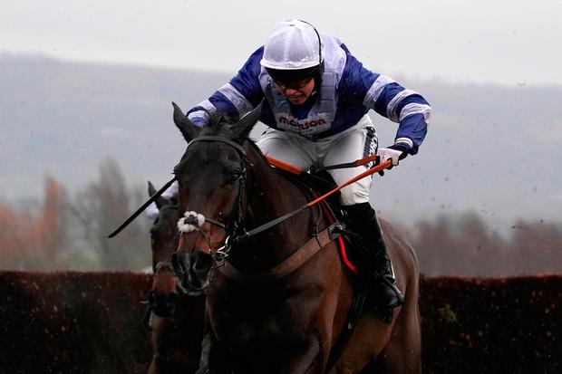 Bryony Frost and Frodon get away from the last fence on the way to winning The Caspian Caviar Gold Cup Handicap Chase at Cheltenham on Saturday. Photo by Alan Crowhurst/Getty Images