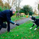 Moment to relax: Theresa May throws a ball for Blitz the border collie after church yesterday. PHOTO: PA Wire