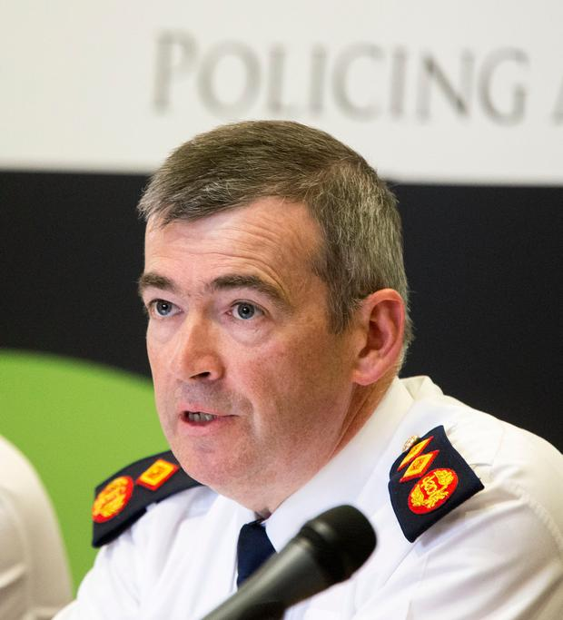 Commitment: Garda Commissioner Drew Harris was said by the Irish Farmers' Association to have pledged the new unit to combat trespassing. Picture: Colin O'Riordan