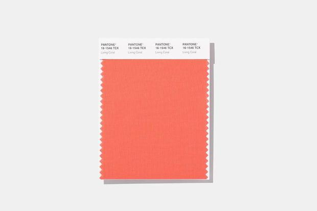 pantone-living-coral-2019=thevow.jpg