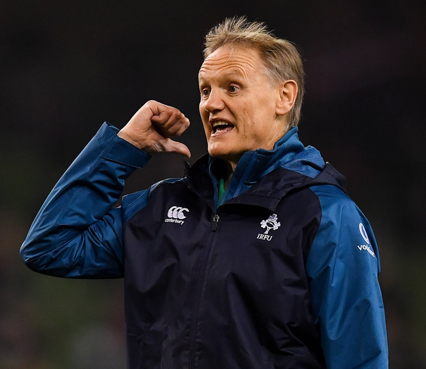 Joe Schmidt will be looking to build more strength in depth in his Irish squad. Photo: Sportsfile