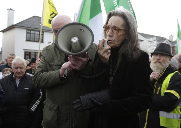 Maura Harrington at a protest against the Roscommon eviction in Stokestown, Co. Roscommon Picture credit; Damien Eagers / INM