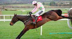 Ruby Walsh and Getabird on the way to victory at Punchestown this month and they will be aiming for similar success at Limerick this afternoon. Photo: carolinenorris.ie