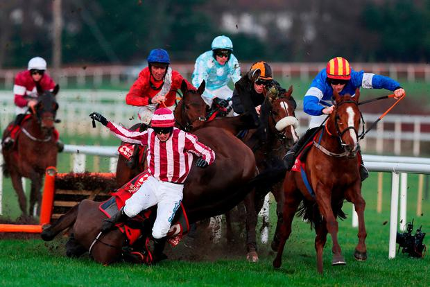Final-flight heartbreak: Bryan Cooper takes a crashing fall from Coeur Sublime at the last as Rocky Blue ridden by David Mullins (right) races clear of the last on the way to winning the Knight Frank Juvenile Hurdle at Leopardstown. Photo: Brian Lawless/PA Wire