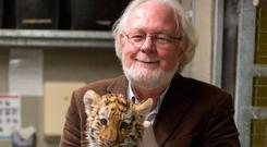 Director of Dublin Zoo, Leo Oosterweghel. PHOTO: MARK CONDREN