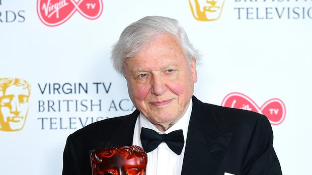 Sir David Attenborough said human beings have to turn their gaze away from themselves (Ian West/PA)