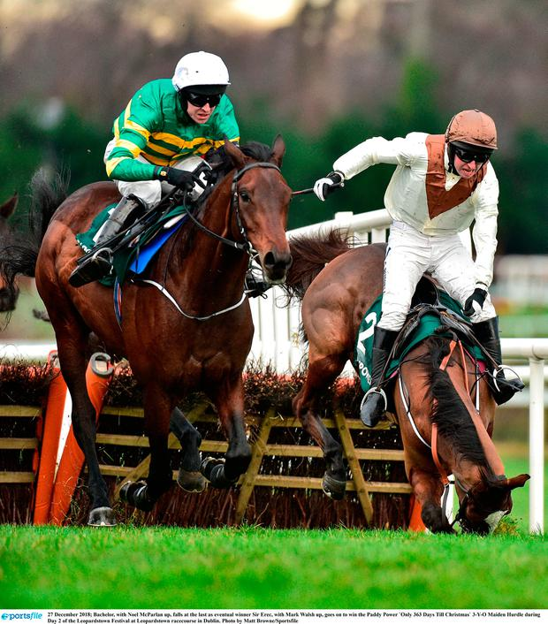 Bachelor, with Noel McParlan up, falls at the last as eventual winner Sir Erec, with Mark Walsh up, goes on to win the Paddy Power `Only 363 Days Till Christmas` 3-Y-O Maiden Hurdle during Day 2 of the Leopardstown Festival