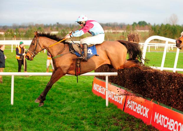 Westerner Point and Philip Enright jump the last to win the Tim Duggan Memorial handicap chase. Photo: Healy Racing