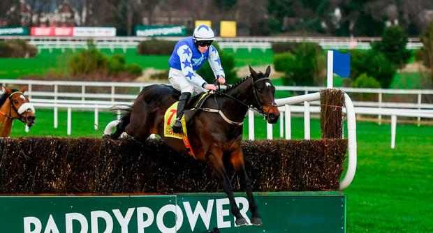 Kemboy, with David Mullins up, jump the last on their way to winning the Savills Steeplechase during day three of the Leopardstown Festival at Leopardstown Racecourse in Dublin. Photo by David Fitzgerald/Sportsfile